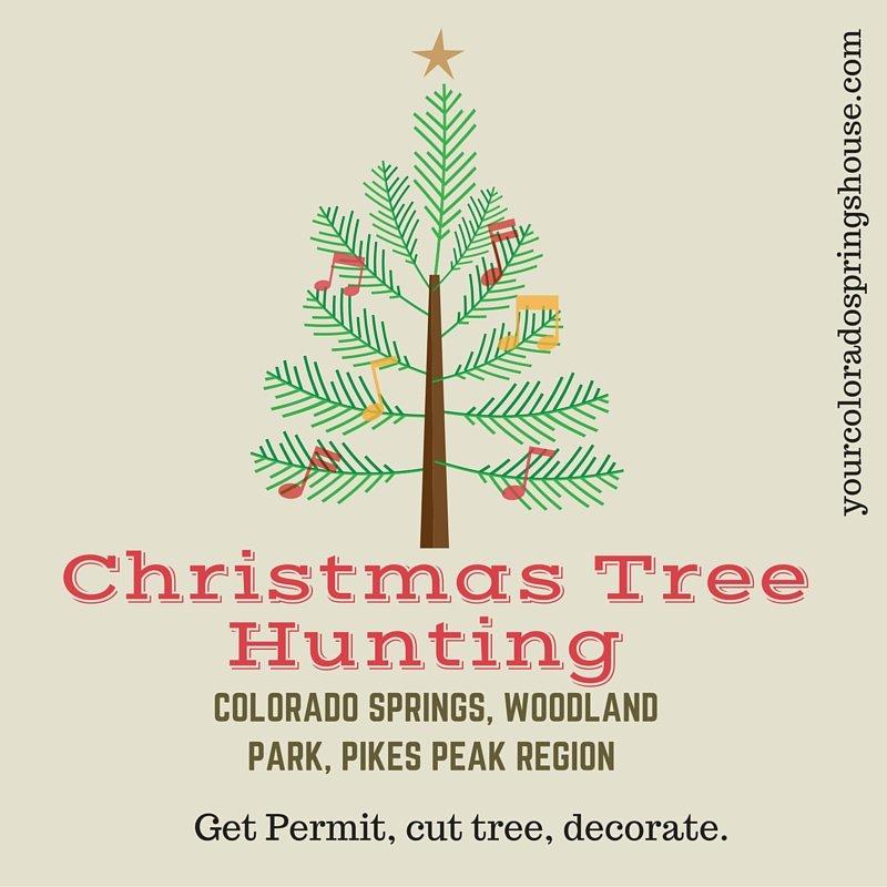 Pikes Peak Regional Christmas Tree Program