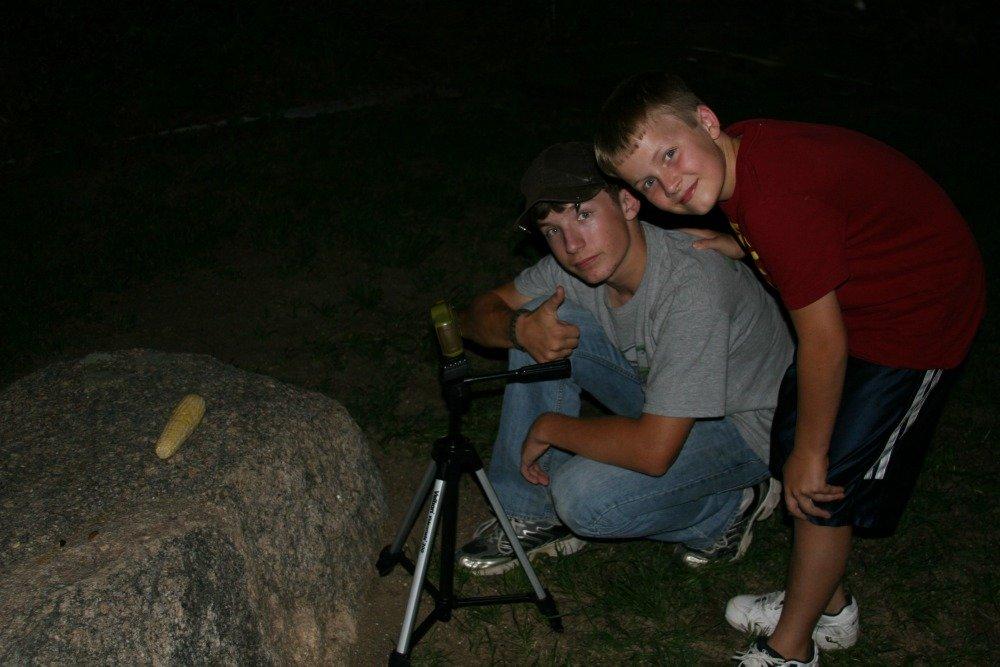 Night cam wildlife