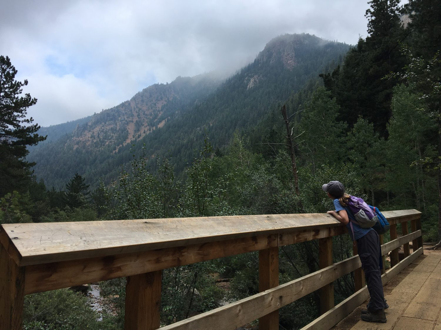 Picture of Seven Bridges Trail