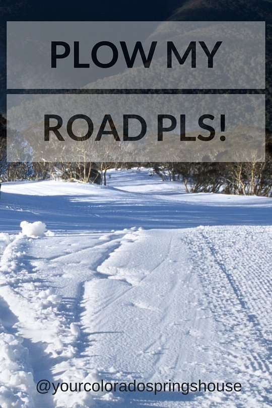 Picture of snow covered road lined with trees captioned with Plow my road pls!