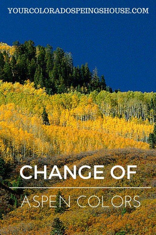 CHANGE OF