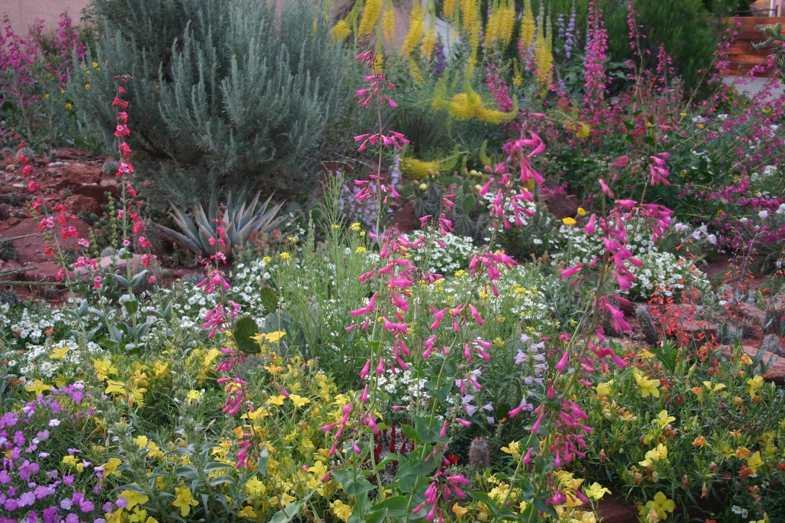 How To Start Gardening High Country Colorado Real Estate