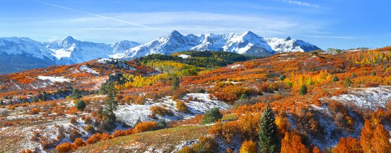 Fall Colors Near Ouray, CO
