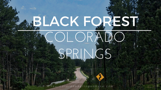 Black Forest, Colorado Springs