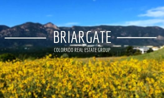 Picture of sunflowers and mountain range in Briargate area of Colorado Springs